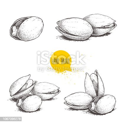 Hand drawn pistachios set. Open and fried fresh organic food. Singles and group. Nuts vector illustrations isolated on white background. EPS10 + JPEG preview.