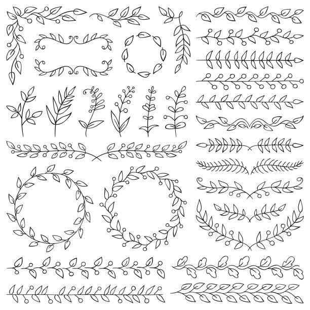 Hand drawn plants, dividers, wreaths, border frames vector art illustration