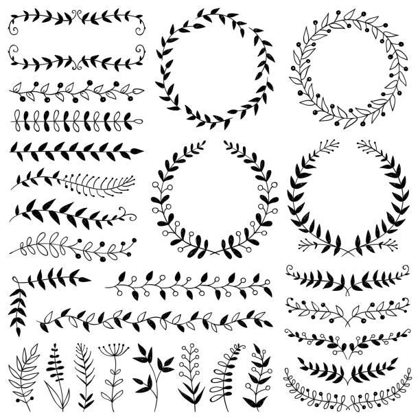 handgezeichnete pflanzen, trennwände, kränze, grenzrahmen - blütenstand stock-grafiken, -clipart, -cartoons und -symbole