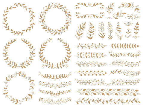 Hand drawn plants, dividers, wreaths, border frames