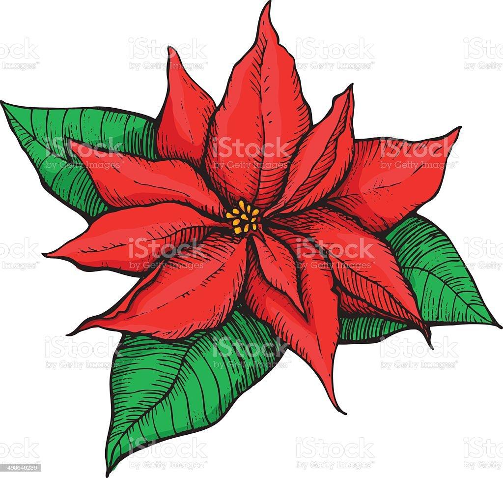 Hand Drawn Weihnachtsstern Weihnachten Sterne Stock Vektor Art und ...