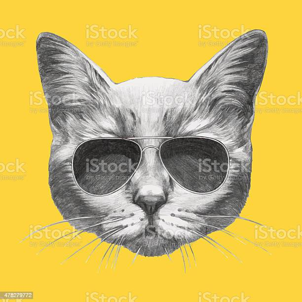 Hand drawn portrait of cat with sunglasses vector id478279772?b=1&k=6&m=478279772&s=612x612&h=ud kktz6uad ylxtdtguj6kpoitpyraxt17y8mn4zv8=