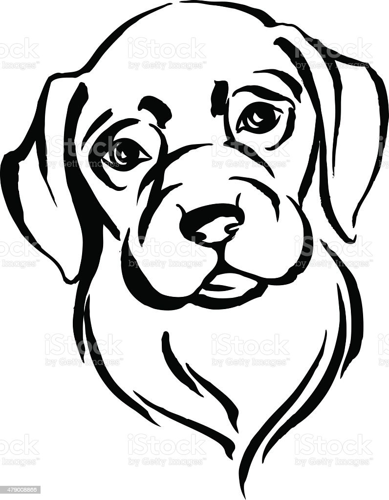 hand drawn portrait of dog labrador black and white stock vector art rh istockphoto com vector conversion from photo to black and white vector line art black and white animal vector art