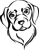 Hand drawn portrait of dog labrador. Black and white