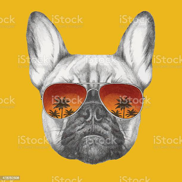 Hand drawn portrait of french bulldog with mirror sunglasses vector id478252508?b=1&k=6&m=478252508&s=612x612&h=4psewmslogrhcnppvamwtqplakfgbujwpqtfm89po9a=