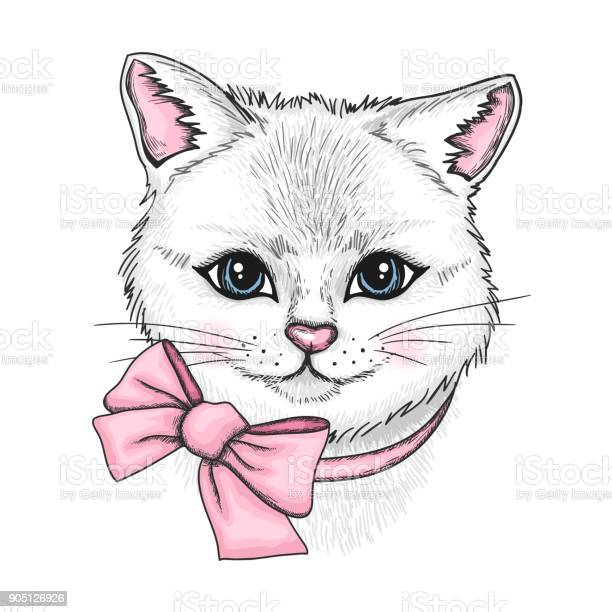 Hand drawn portrait of white cat with a pink bow vector id905126926?b=1&k=6&m=905126926&s=612x612&h=jlovmknuimatjpkqnhr27qd2pb1n 8m5falv8h3e8iu=