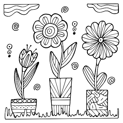 Hand drawn potted flowers on a white isolated background. Coloring book for children and adults. Simple outline antistress drawing.