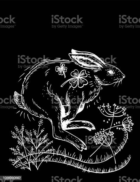Hand drawn rabbit and plants vector id1058390562?b=1&k=6&m=1058390562&s=612x612&h=mwee 9kmgznet d 4advkug4d9wjfuowljzhjfrbtq4=