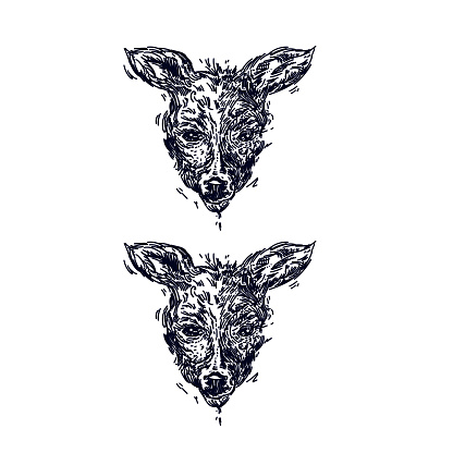Vetores De Desenho Realista Desenhado De Mao De Um Cervo Isolado