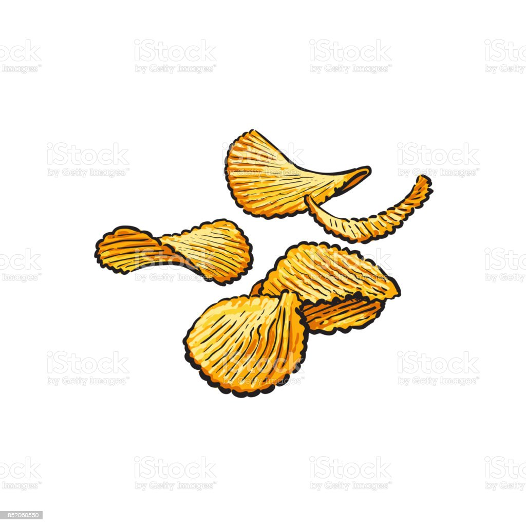 Hand drawn rifled potato chips vector illustration vector art illustration