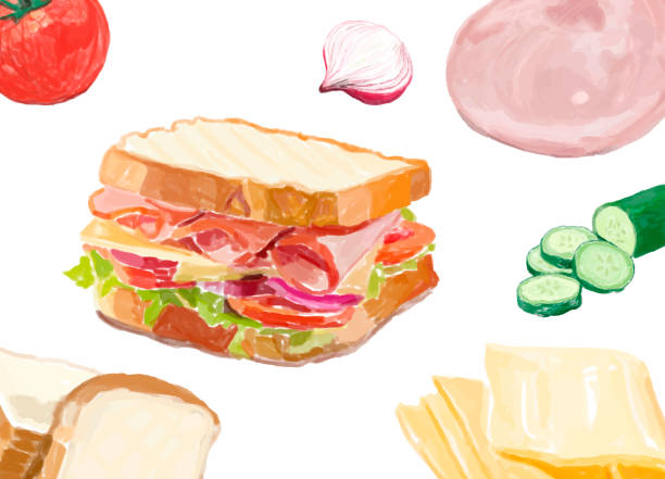 Hand drawn sandwich watercolor style Hand drawn sandwich watercolor style bread backgrounds stock illustrations