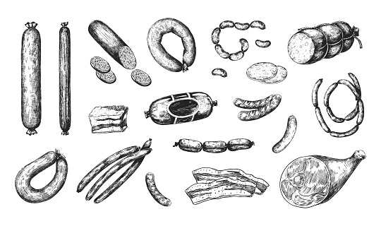 Hand drawn sausage. Engraved meat food. Isolated jamon and bacon. Pork bologna chorizo or mortadella. Ham and salami slices. Butchery products set. Tasty meal. Vector delicious snacks