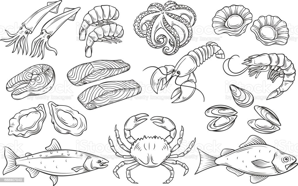 Hand drawn Seafood set vector art illustration