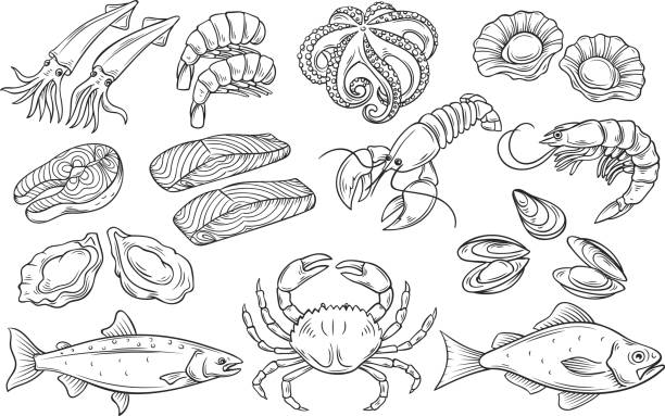 Hand drawn Seafood set Hand drawn Seafood set. Decorative icons Squid, Octopus, salmon, oysters, scallops, lobster, red perch ,crab, shellfish and mussels. Vector illustration in old ink style seafood stock illustrations