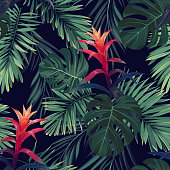 Hand drawn seamless floral pattern with guzmania flowers, monstera and royal palm leaves. Exotic hawaiian background. Vector illustration.