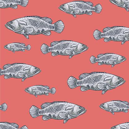 Hand Drawn Seamless Pattern Of Grouper Fish