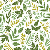 Hand drawn seamless pattern - salad greens and leaves isolated on white background in trendy organic style. Vector illustration for vegetarian menu or  packaging design.