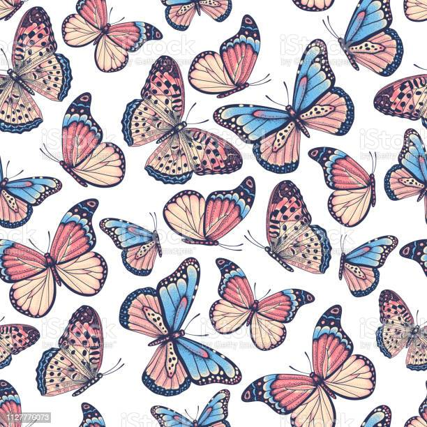 Hand drawn seamless pattern with butterflies vector id1127776073?b=1&k=6&m=1127776073&s=612x612&h=kzhevn cf5l o19 lgcx659c3wguiz1 ysap78yher0=