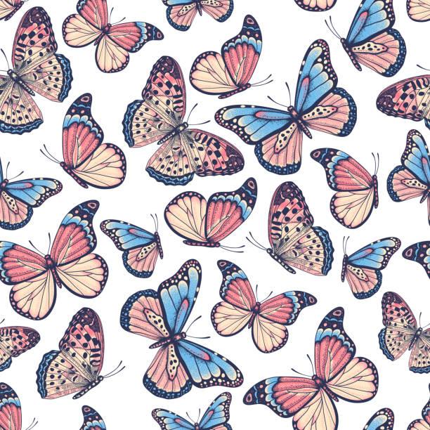 illustrations, cliparts, dessins animés et icônes de modèle sans soudure étiré de main avec des papillons - papillon