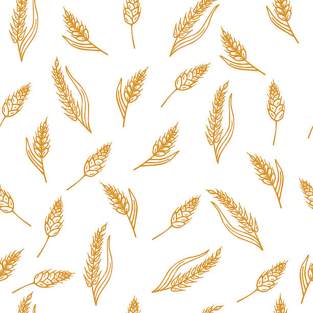 Hand drawn seamless pattern with ears of wheat Hand drawn seamless pattern with ears of wheat. Vector illustration bread backgrounds stock illustrations
