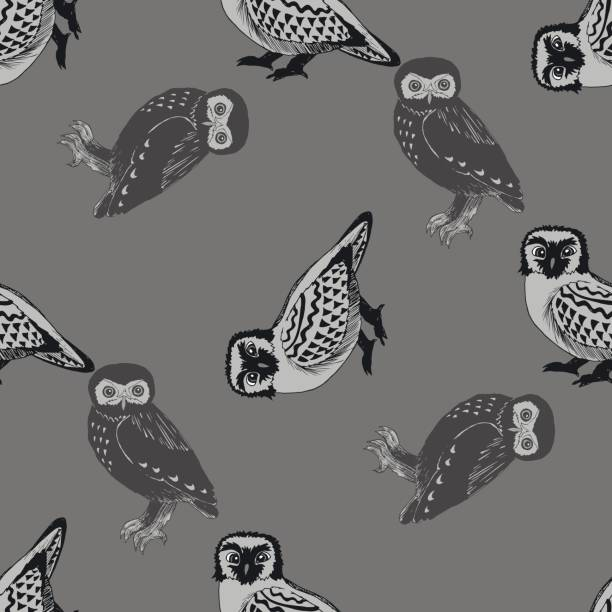 hand drawn seamless pattern with owls. - black and white owl stock illustrations, clip art, cartoons, & icons
