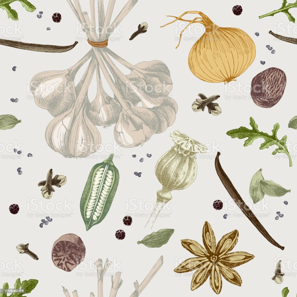 Hand drawn seamless pattern with spices vector art illustration