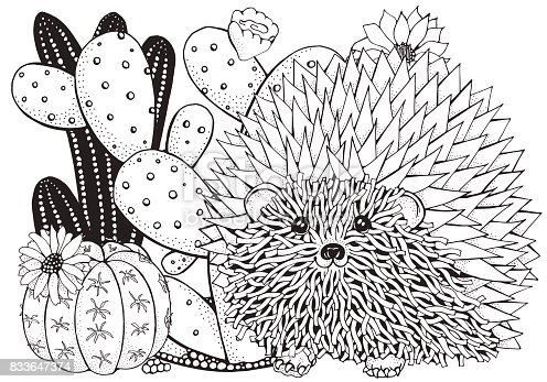 Hand Drawn Set Of Succulents And