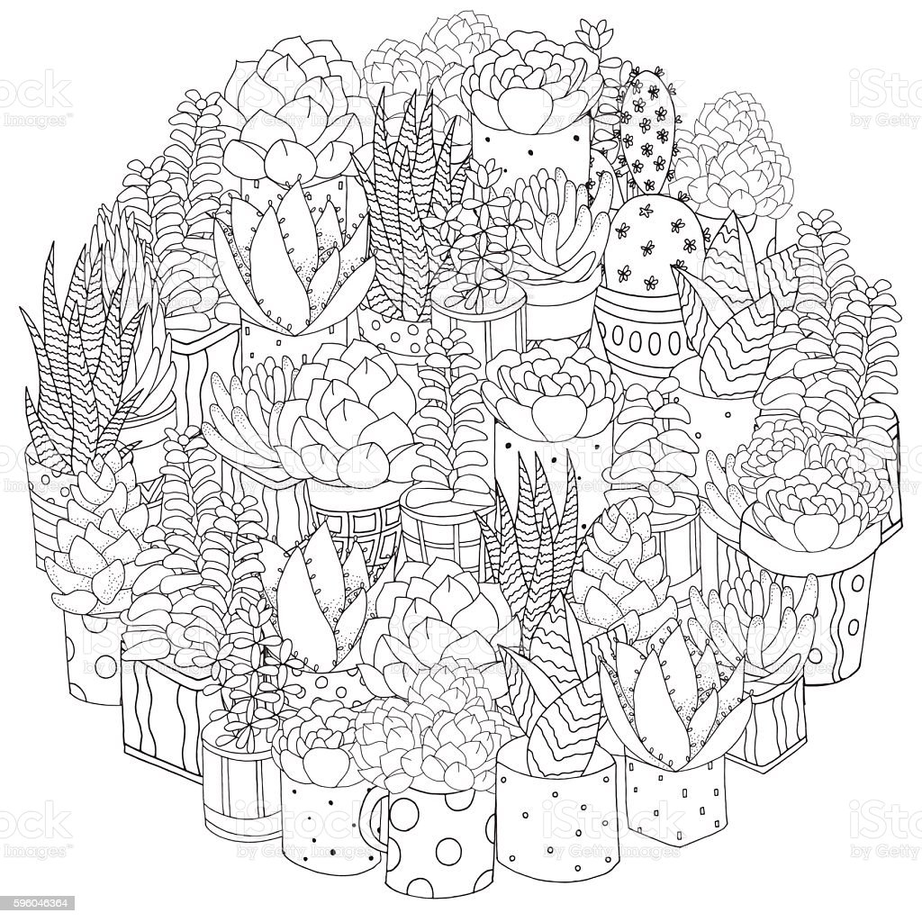 Hand drawn set of succulents, cactuses and pots. vector art illustration