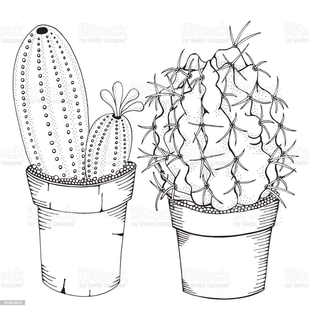 getekend set of cactus en vetplanten in potten