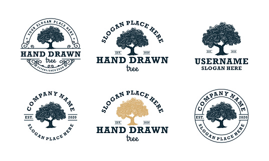 hand drawn shady tree abstract sign, symbol or logo design template