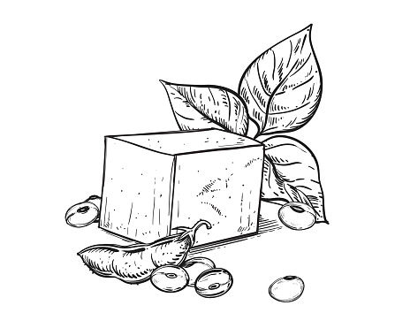 Hand drawn sketch black and white soybean, soy plant, leaf, tofu. Vector illustration. Elements in graphic style label, card, sticker, menu, package. Engraved style illustration.
