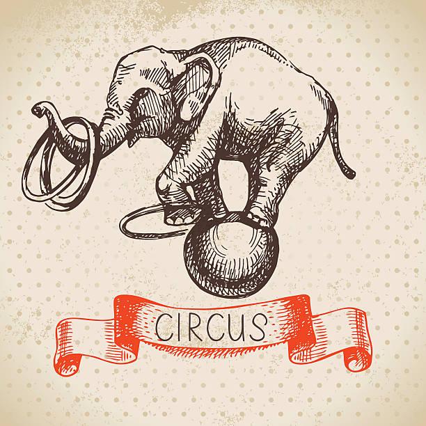hand gezeichnete skizze zirkus und vergnügungspark vektor-illustration. vinton g. cerf - elefantenkunst stock-grafiken, -clipart, -cartoons und -symbole