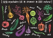 Hand drawn sketch of vegetables with hand lettering names.