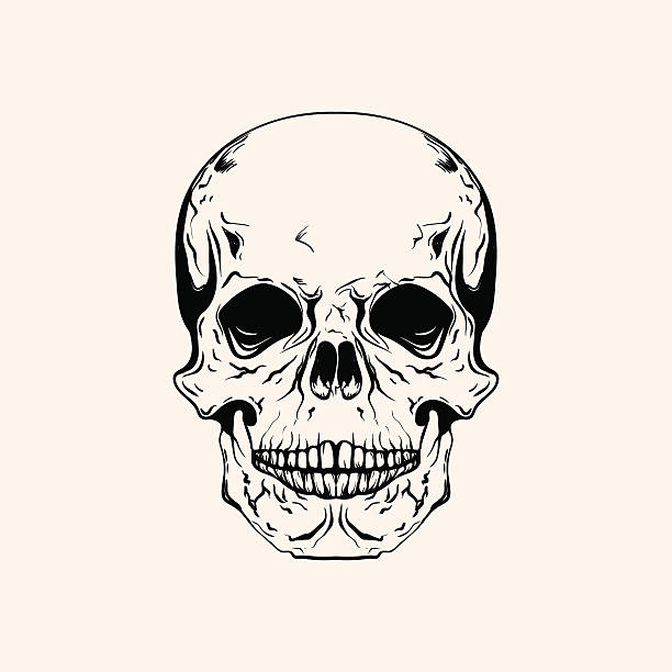 手描きスケッチタトゥーのスカルラインアート。ビンテージベクトル illustra ベクターアートイラスト