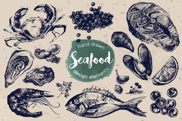 Hand Drawn Sketch Set of Seafood vector art illustration