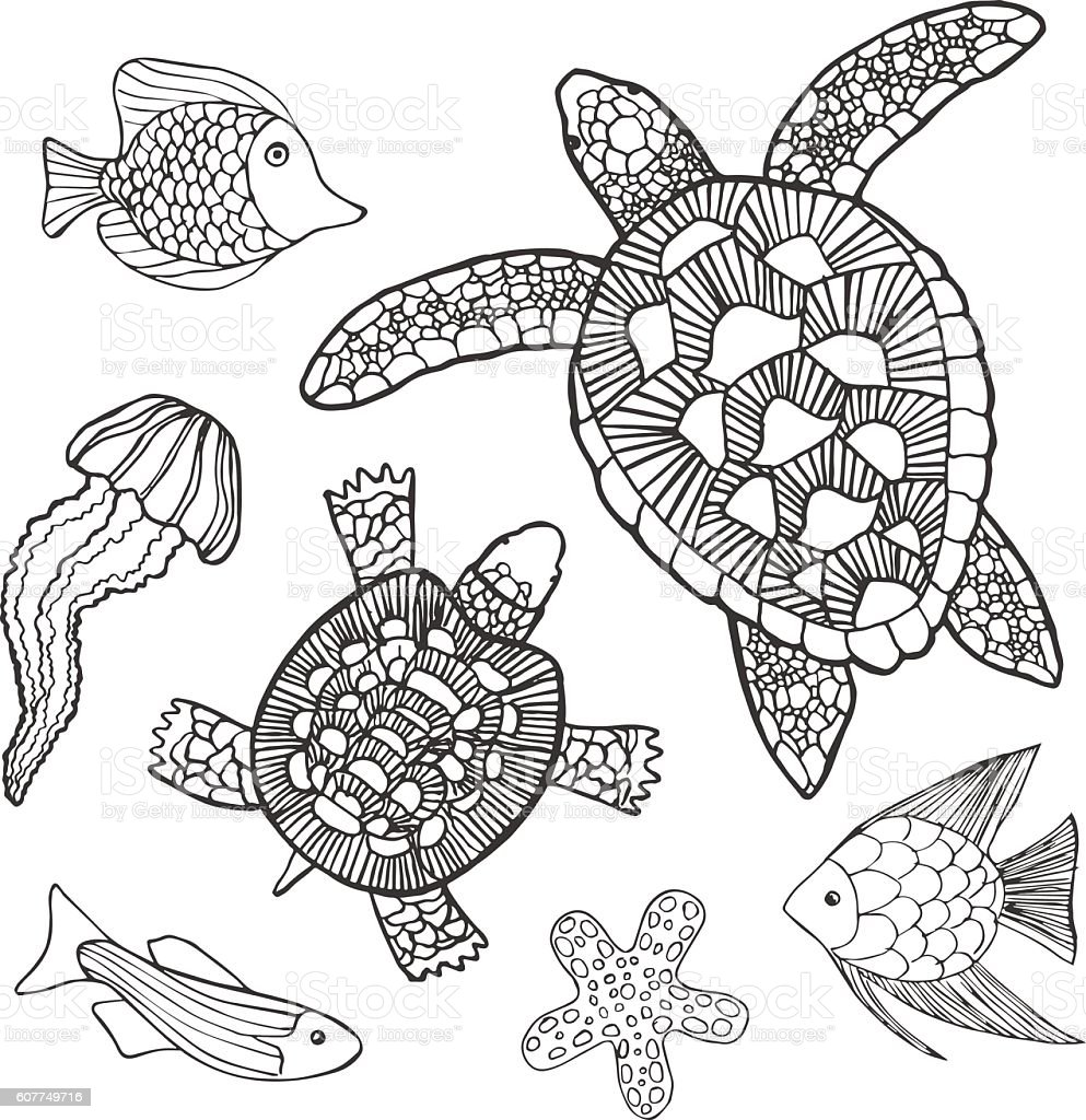 Hand Drawn Sketch Set Of Turtles And Other Sea Animals ...