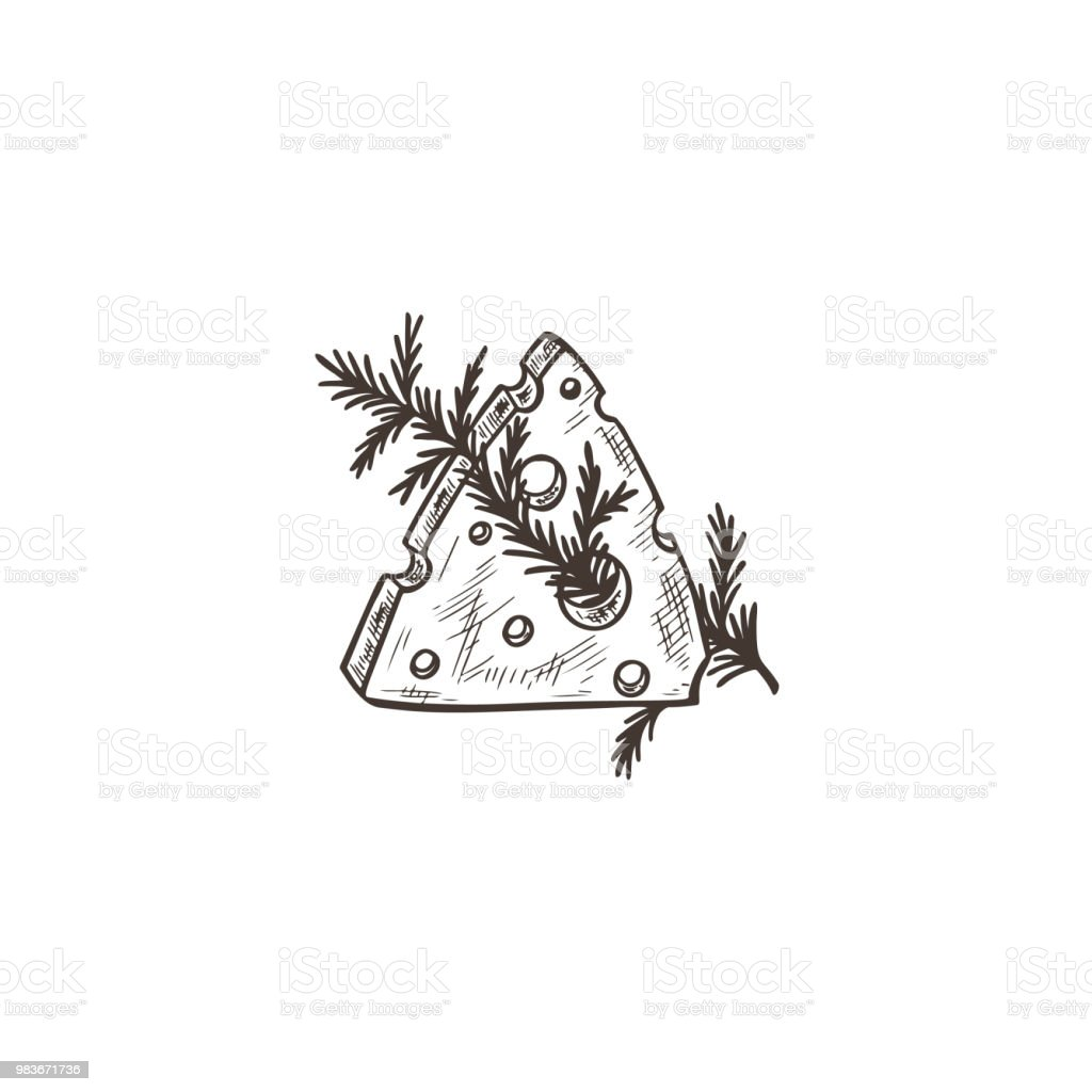 Hand Drawn Sketch Slice Of Cheese With Rosemary Vector