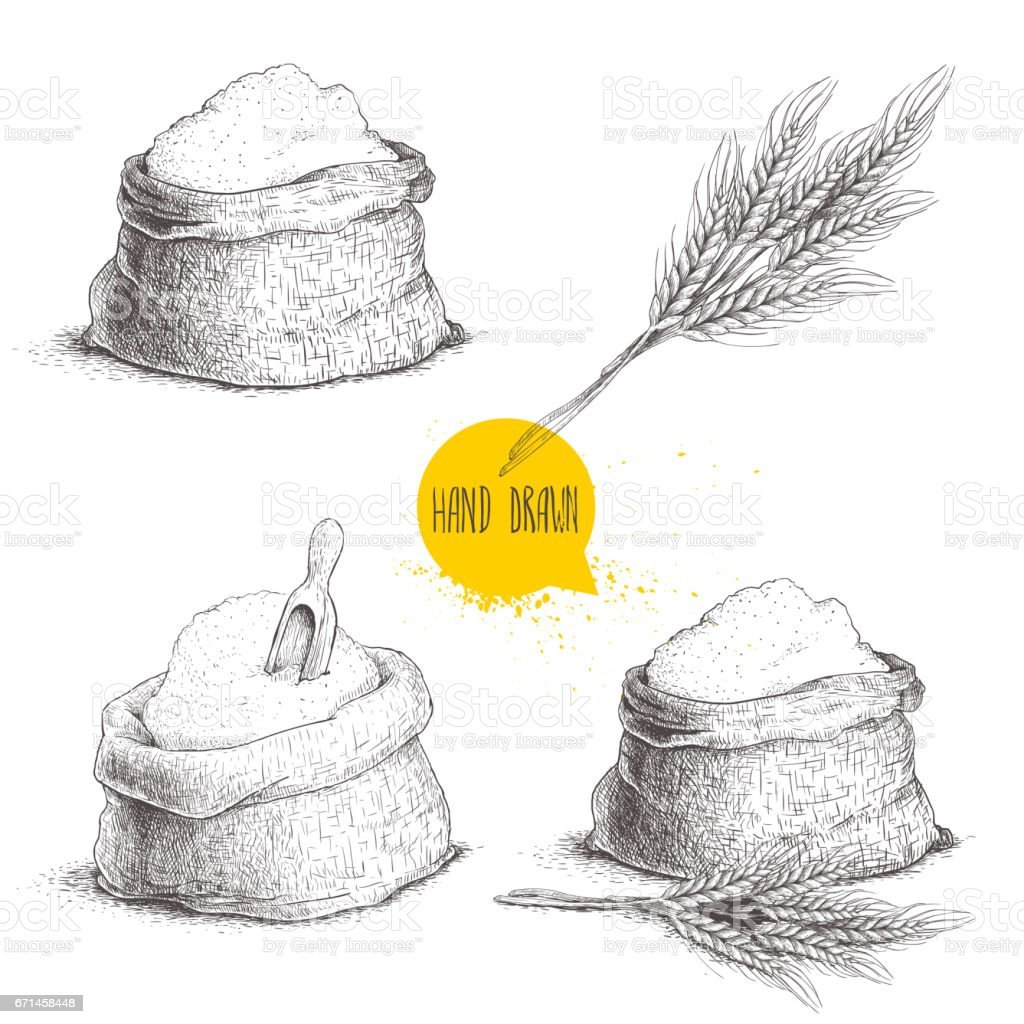 Hand drawn sketch style set of sacks with whole flour and wheat bunch. Bag with sugar, flour sack with wooden scoop, wheat sheaf. vector art illustration