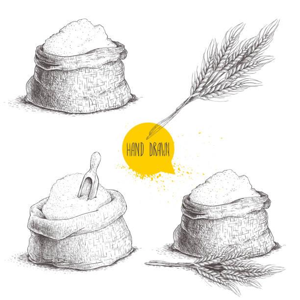 handgezeichnete skizze stilgruppe säcke mit ganze mehl und weizen bündel. tasche mit zucker, mehl sack mit hölzernen schaufel, weizen garbe. - mehl stock-grafiken, -clipart, -cartoons und -symbole