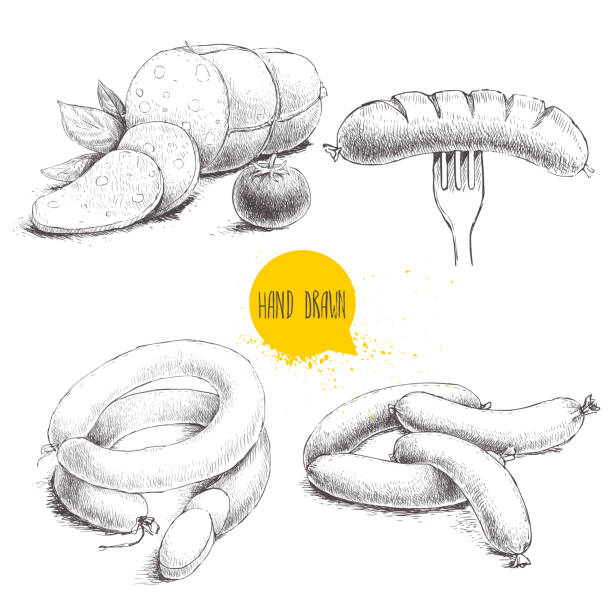 hand drawn sketch type set of sausages. - würstchen stock-grafiken, -clipart, -cartoons und -symbole