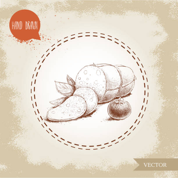 illustrazioni stock, clip art, cartoni animati e icone di tendenza di hand drawn sketch type sliced mortadella with basil leafs - mortadella