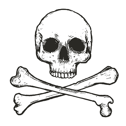 hand drawn illustration of human skull with two crossed bones