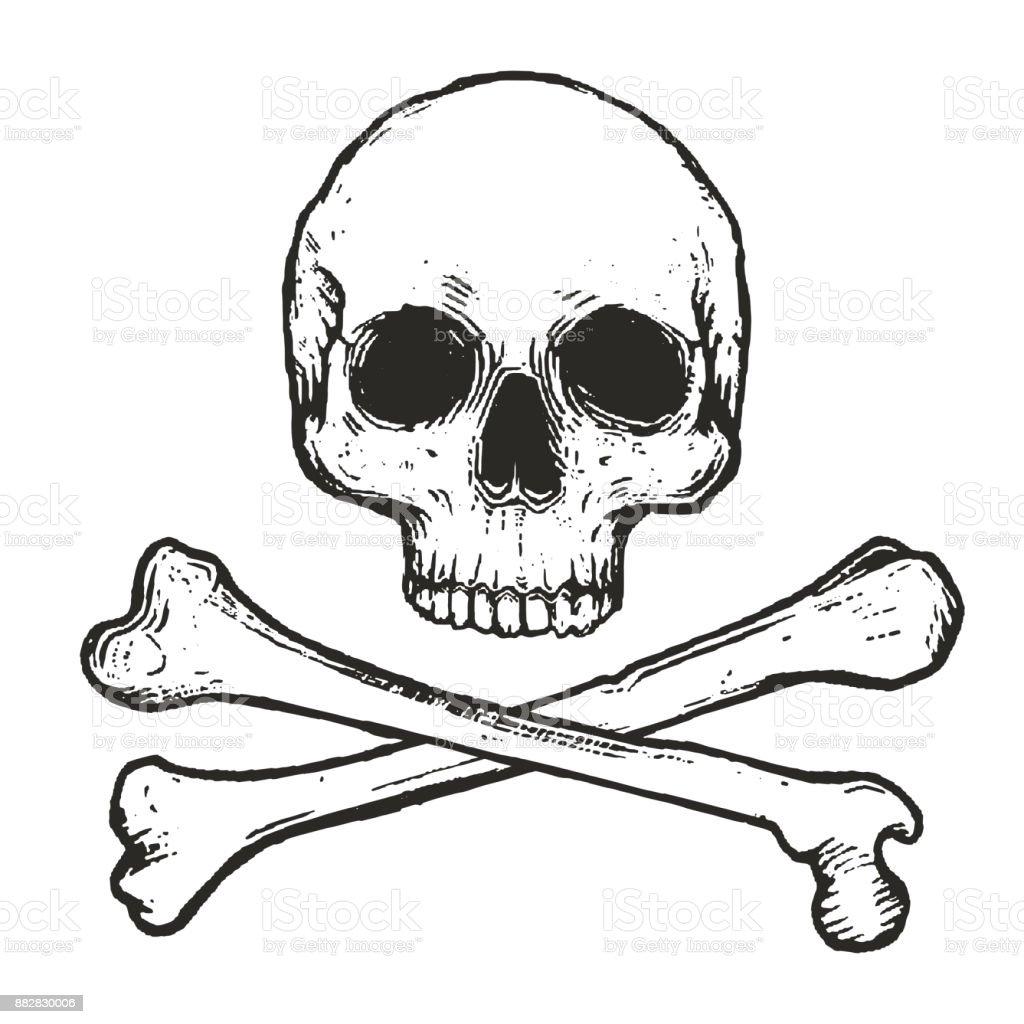 hand drawn skull and crossbones vector illustration isolated on white background vector art illustration