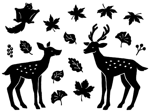 Hand drawn style silhouette illustration set of deer, flying squirrel and various leaves