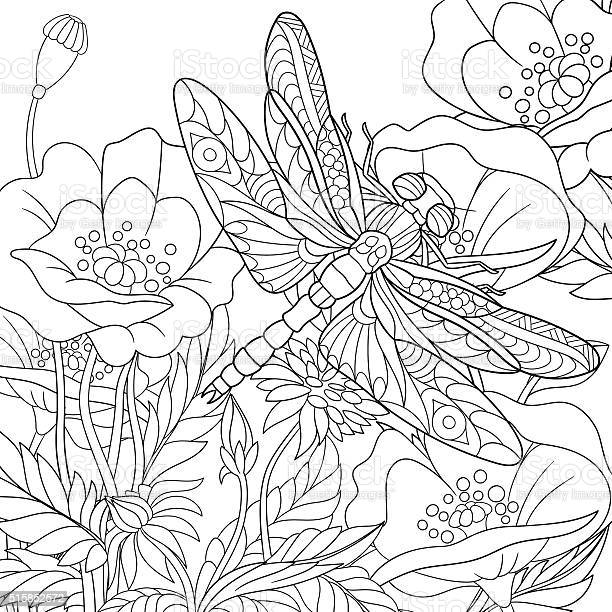 Hand drawn stylized dragonfly insect vector id515852572?b=1&k=6&m=515852572&s=612x612&h=nvm57jgdvgh53mlsdfaufncdlaydwe4eqtf7t5udupw=