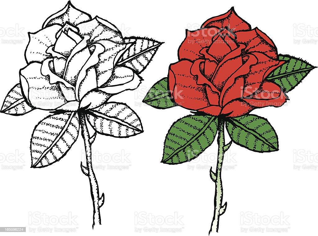Tatuaje Estilo de dibujo a mano de rosas ilustración de tatuaje estilo de dibujo a mano de rosas y más banco de imágenes de conceptos libre de derechos