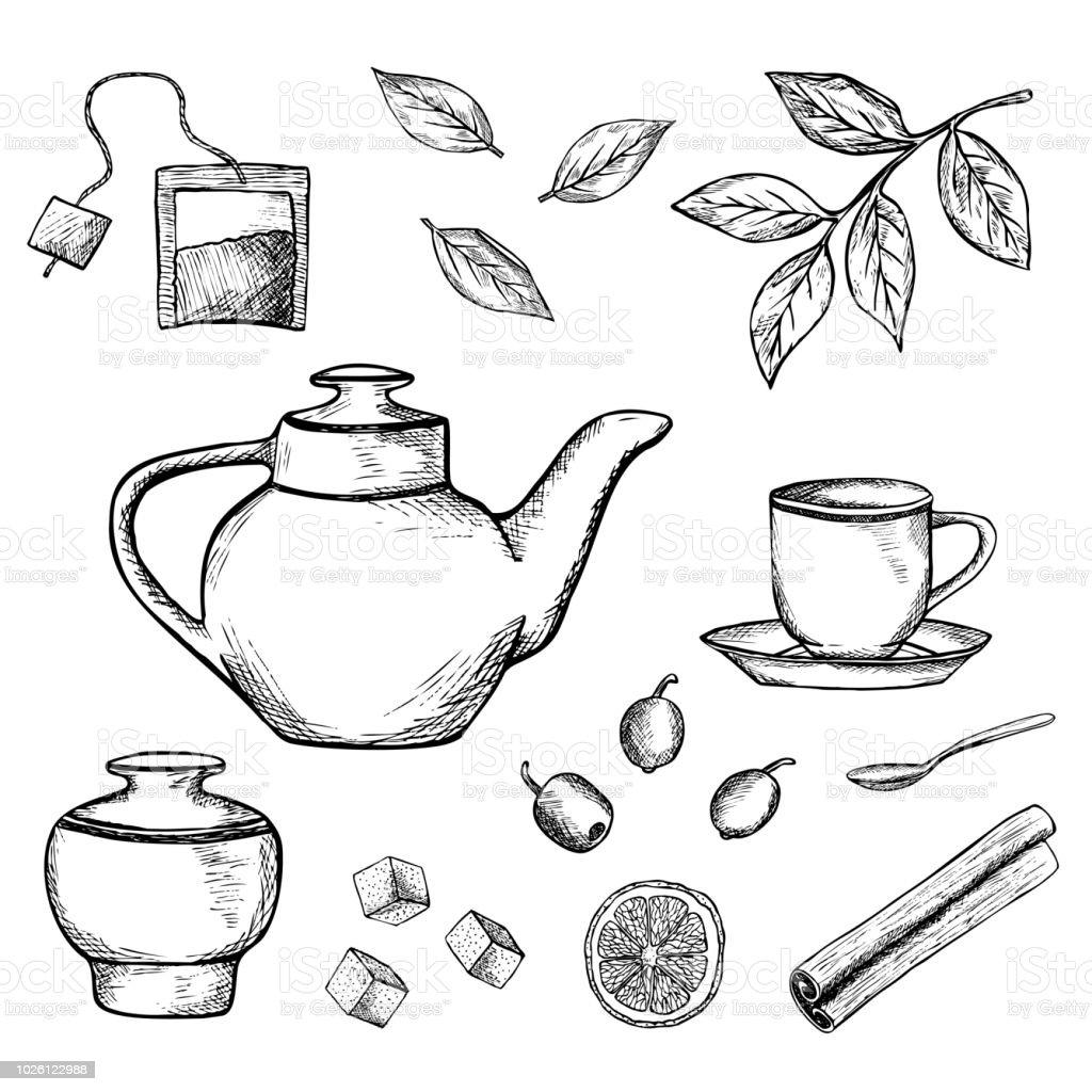 hand drawn tea vector illustration stock illustration download image now istock hand drawn tea vector illustration stock illustration download image now istock