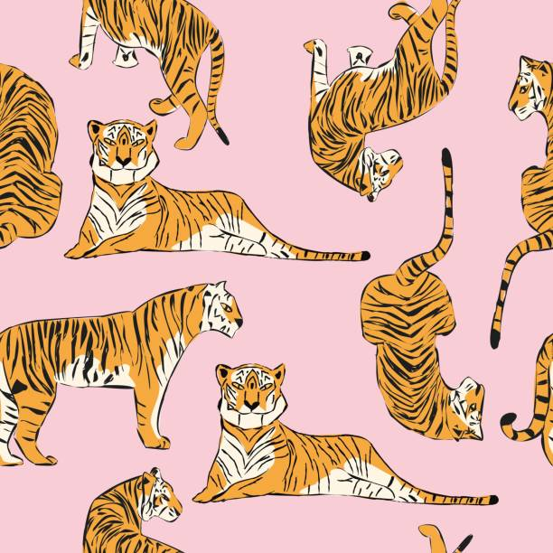 Hand drawn tiger seamless pattern, big cats in different position, exotic background, flat vector illustration vector art illustration