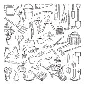 Hand drawn tools for farming and gardening. Doodle of nature environment. Agriculture and farm equipments wheelbarrow and secateurs, farming tools illustration