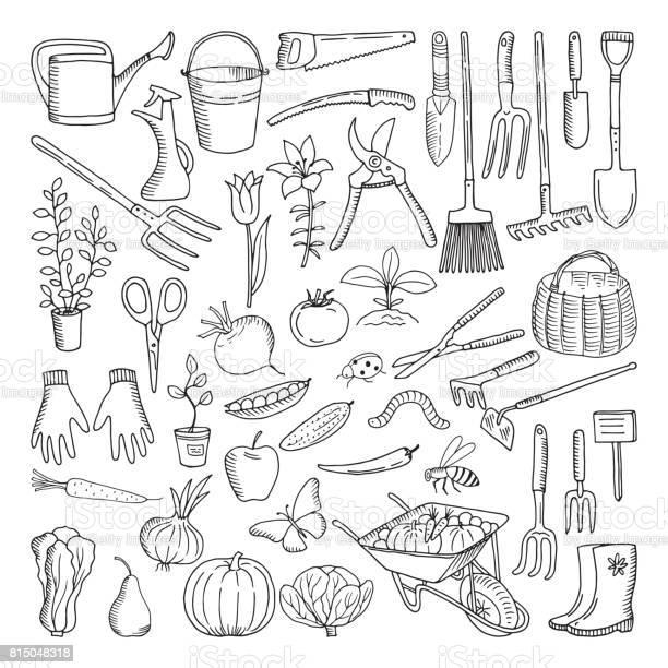 Hand drawn tools for farming and gardening doodle of nature vector id815048318?b=1&k=6&m=815048318&s=612x612&h=ognawhl967lkaio376khcvl0edn27g2qffblmpdzzd0=